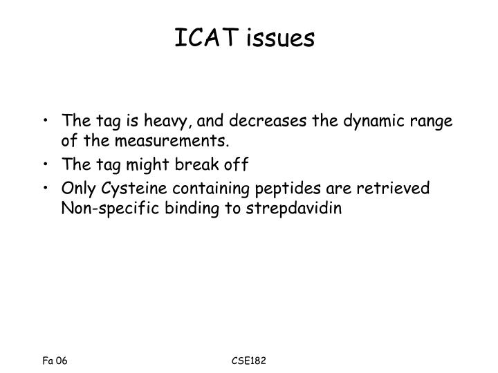 ICAT issues