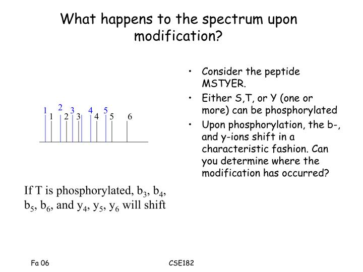 What happens to the spectrum upon modification