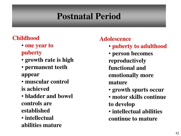 Postnatal Period