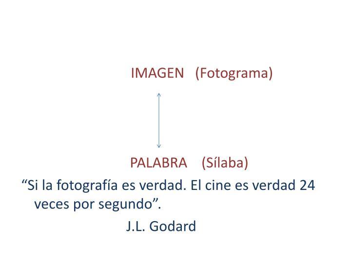 IMAGEN   (Fotograma)
