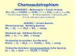 chemoautotrophism