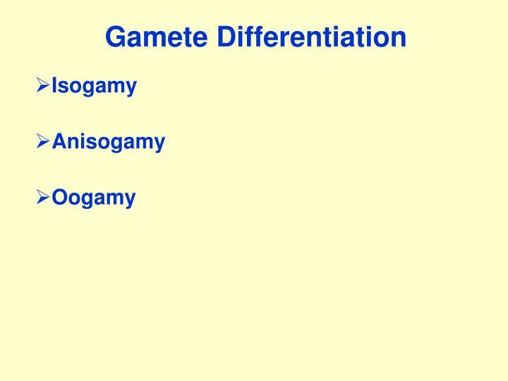 Gamete Differentiation