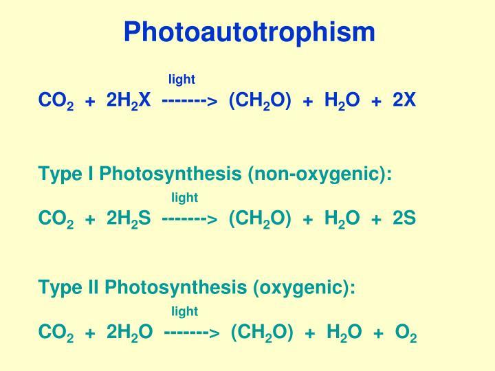 Photoautotrophism