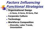 factors influencing functional strategies