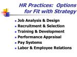 hr practices options for fit with strategy