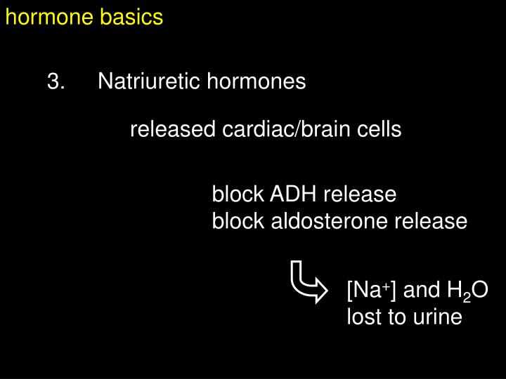 hormone basics