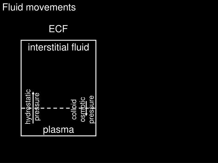 Fluid movements