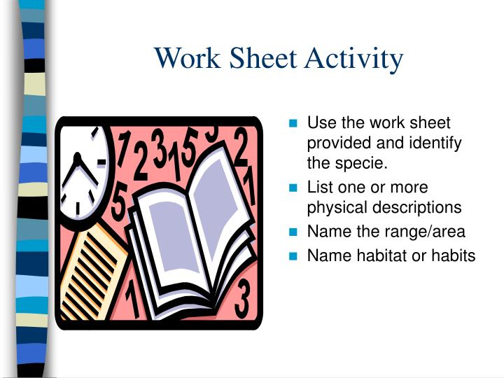 Work Sheet Activity