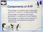 components of ayp