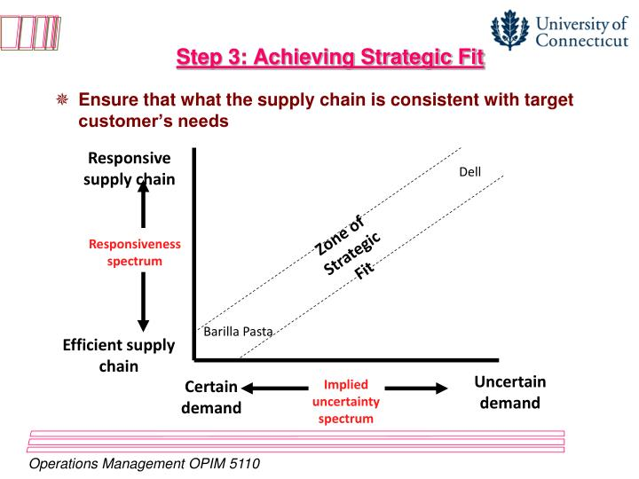 Step 3: Achieving Strategic Fit
