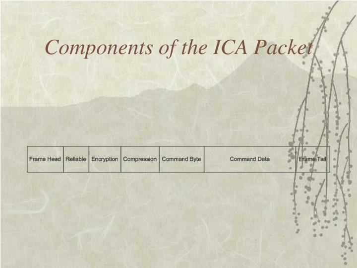 Components of the ICA Packet