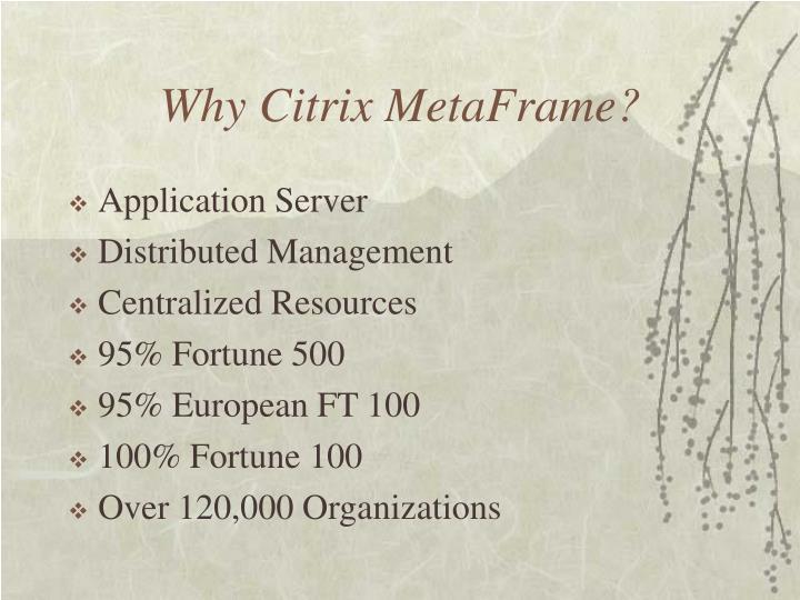 Why Citrix MetaFrame?