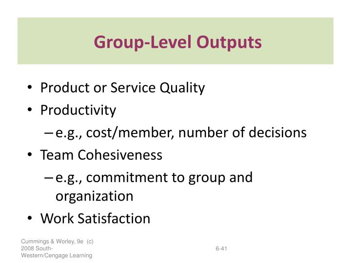 Group-Level Outputs