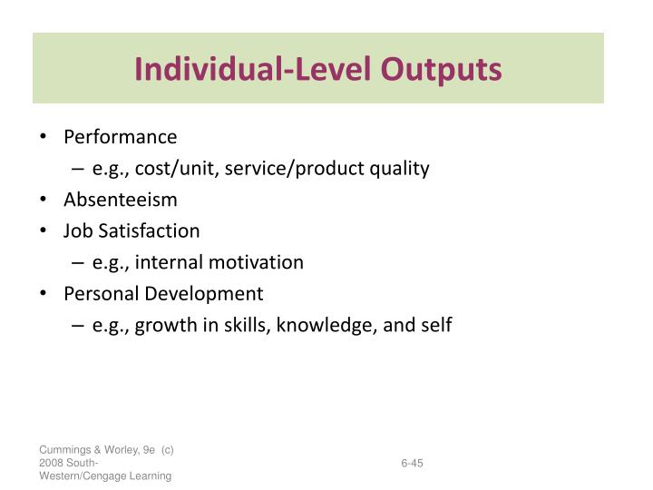 Individual-Level Outputs