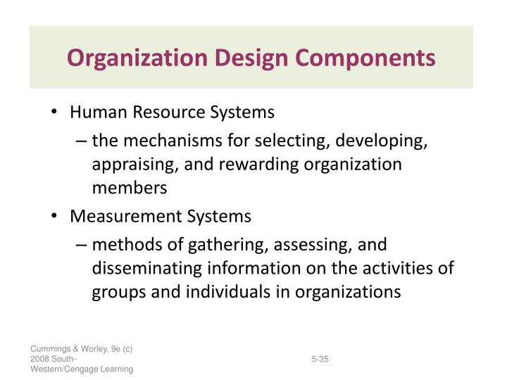 Organization Design Components
