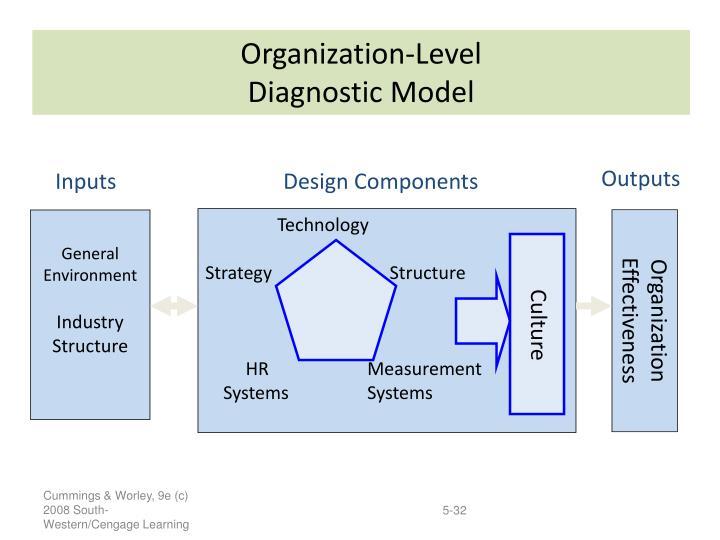 Organization-Level