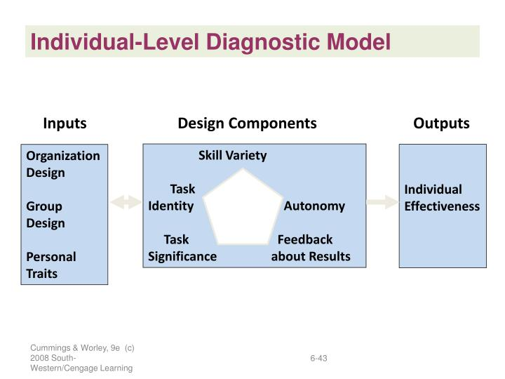 Individual-Level Diagnostic Model