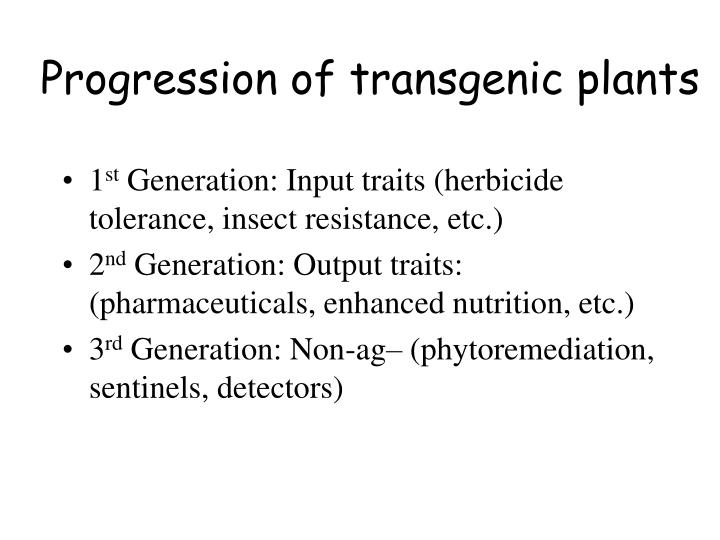Progression of transgenic plants