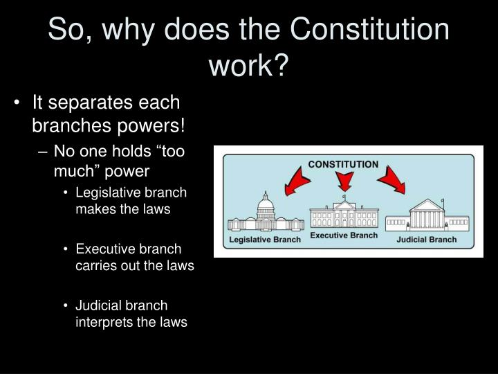 So, why does the Constitution work?