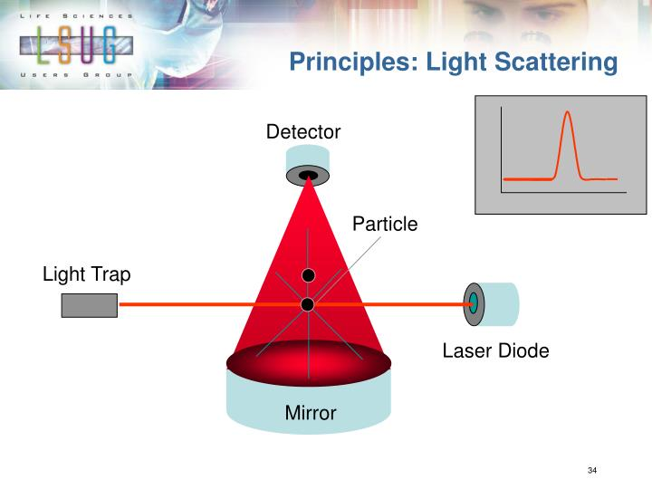 Principles: Light Scattering