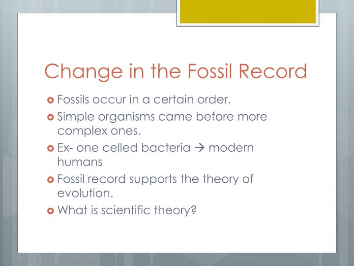 Change in the Fossil Record