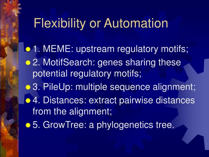 Flexibility or Automation