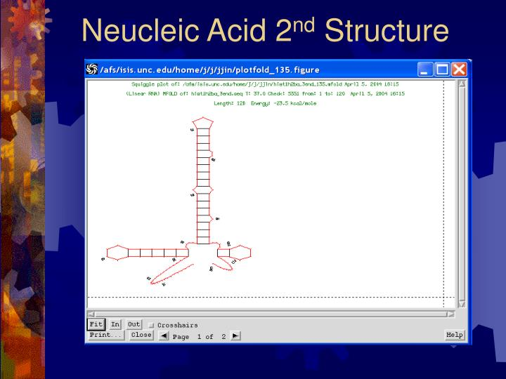 Neucleic Acid 2