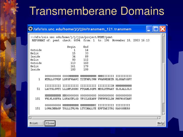 Transmemberane Domains