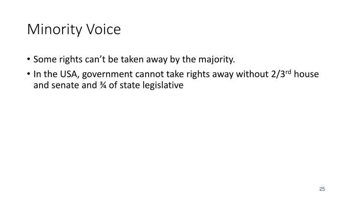 Minority Voice