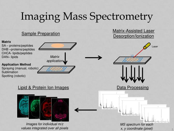 Imaging Mass Spectrometry