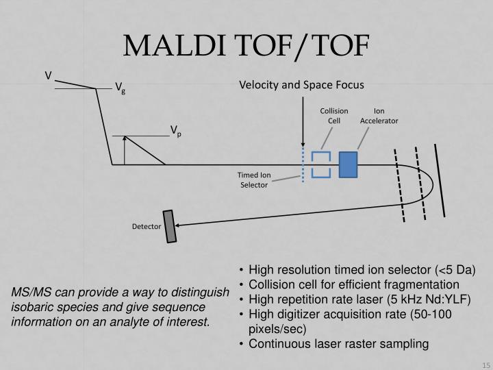 MALDI TOF/TOF