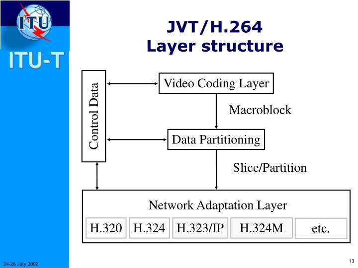 JVT/H.264