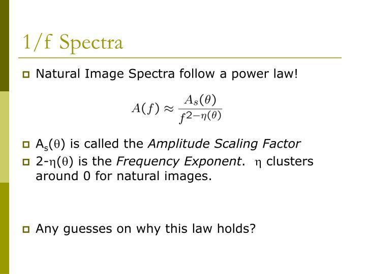 1/f Spectra