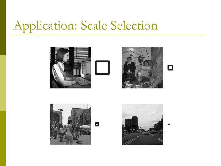 Application: Scale Selection