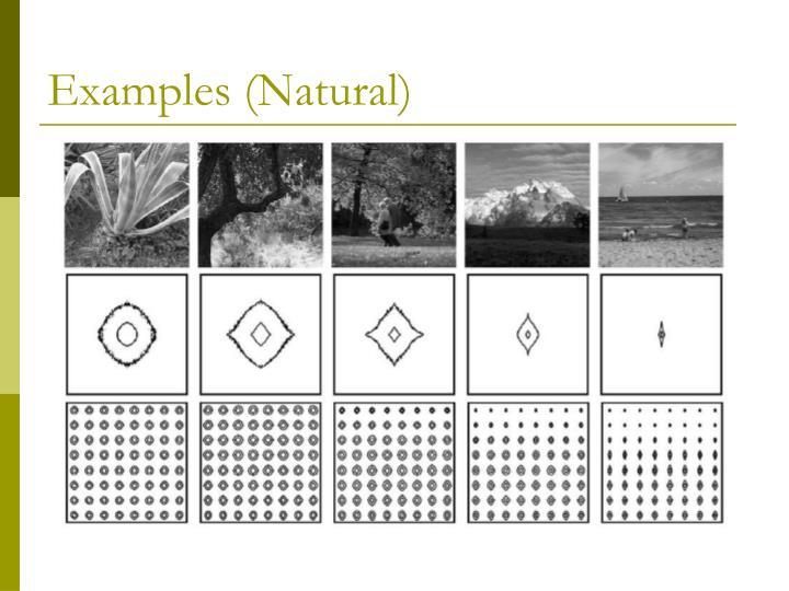 Examples (Natural)