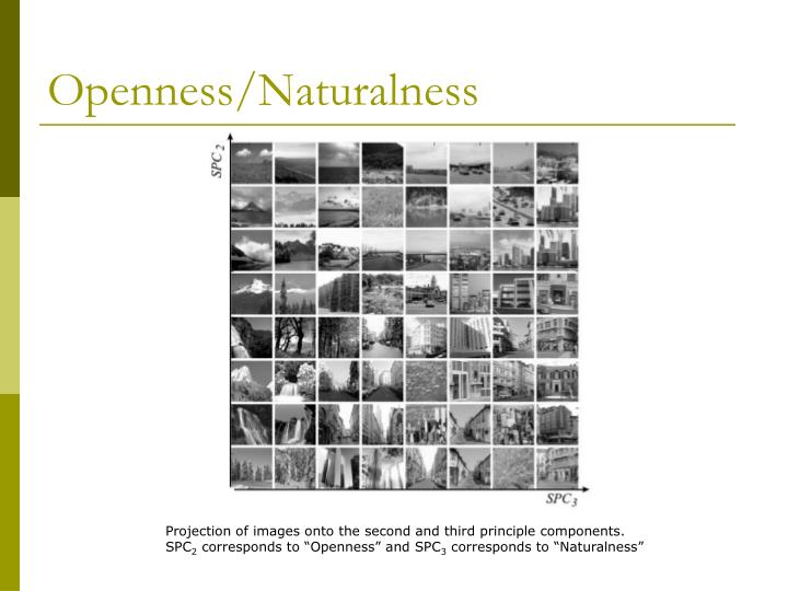 Openness/Naturalness
