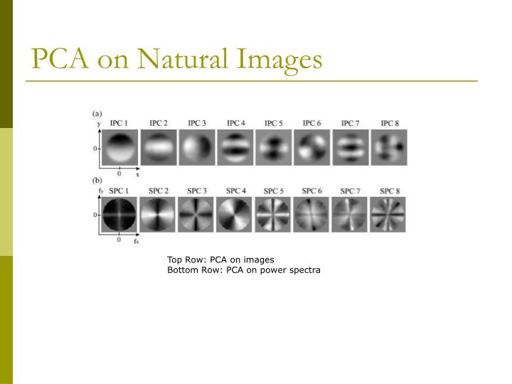 PCA on Natural Images