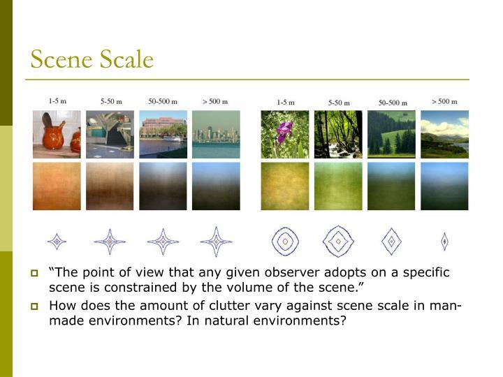 Scene Scale
