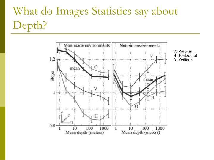 What do Images Statistics say about Depth?