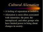 cultural alienation