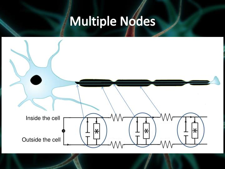 Multiple Nodes