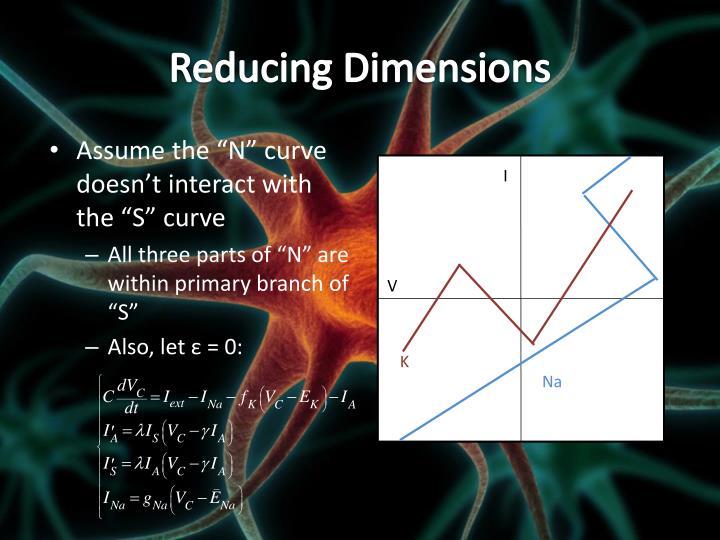 Reducing Dimensions