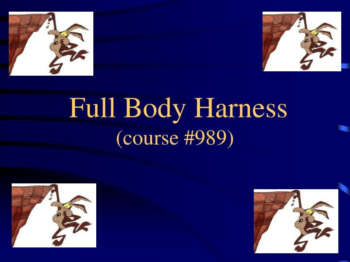 Full body harness course 989