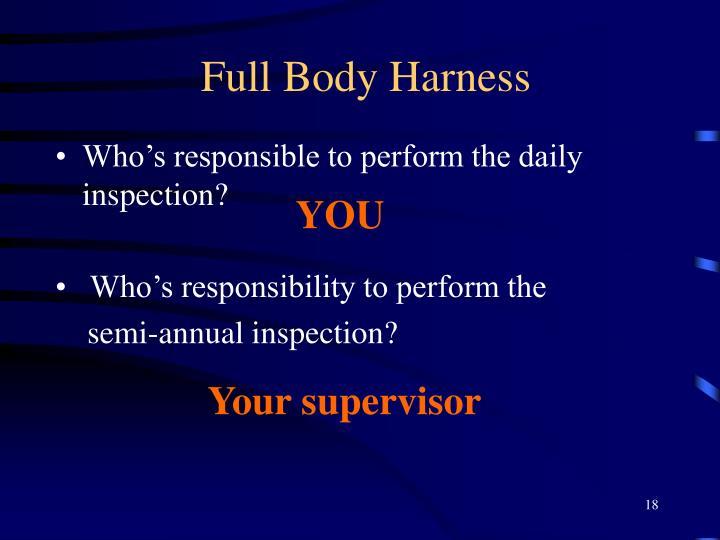 Full Body Harness