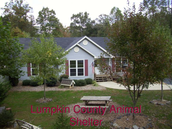 Lumpkin County Animal Shelter