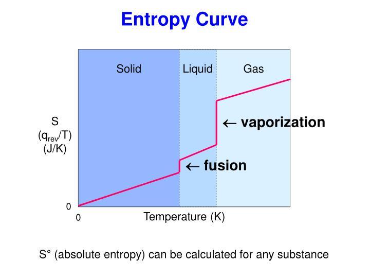 Entropy Curve