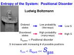 entropy of the system positional disorder