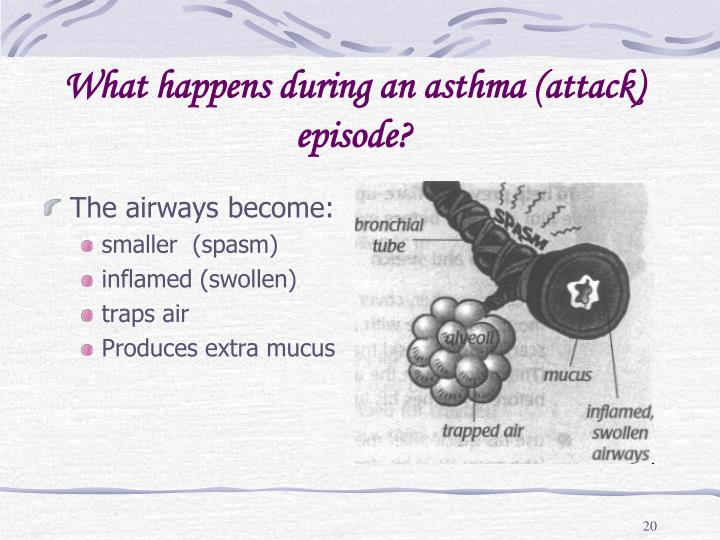 What happens during an asthma (attack) episode?