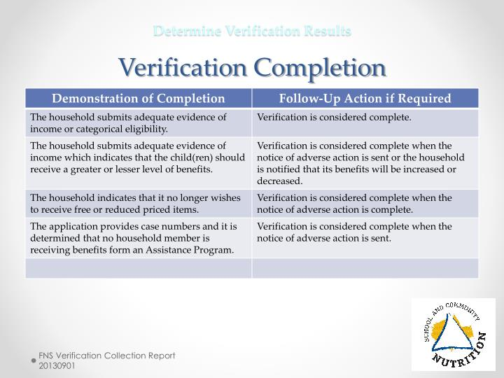 Determine Verification Results