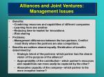 alliances and joint ventures management issues
